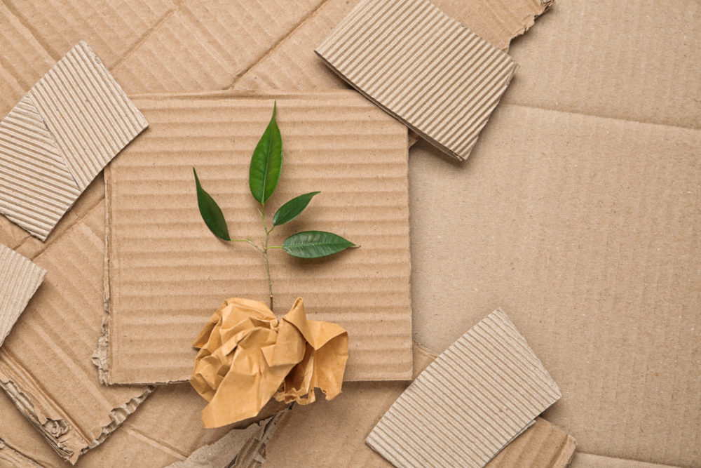 Recycled paperboard sheets on display